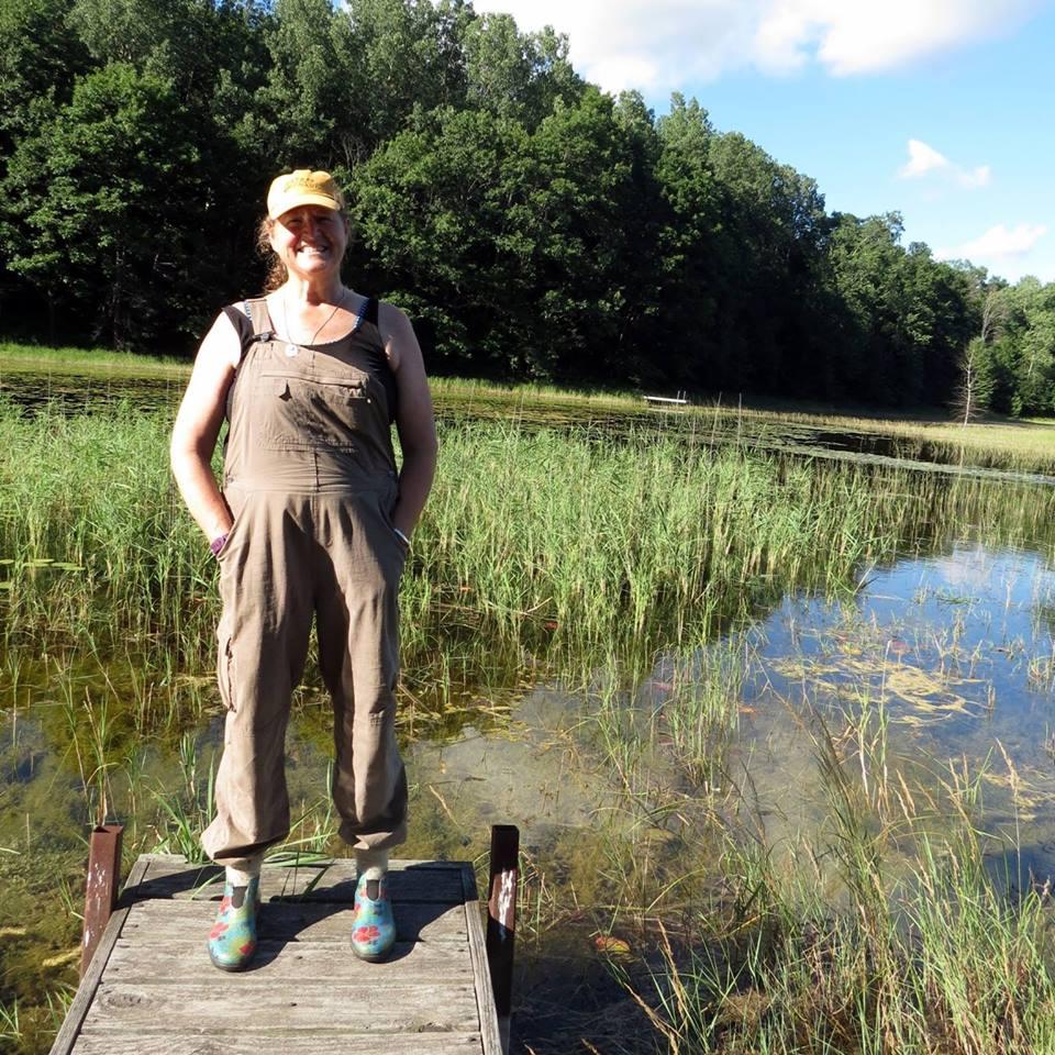 wendy swamp