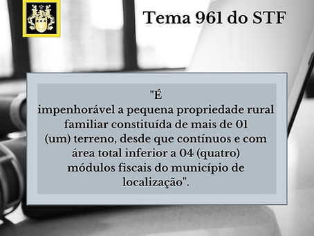 Impenhorabilidade da pequena propriedade rural