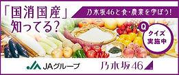 国消国産乃木坂46.jpg
