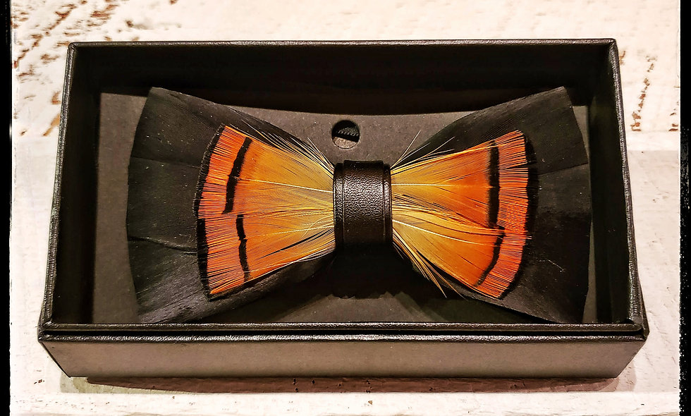 Sunrise Feather Bow Tie