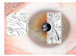 Eye pic logo_edited
