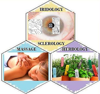 Iridology, Massage, Sclerology, Herbology