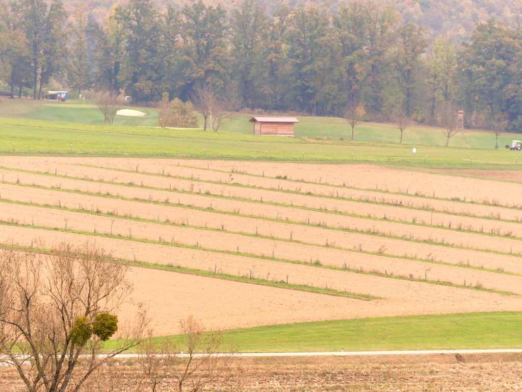 agroforst%20hardt%20gepfl%C3%BCgt%2015