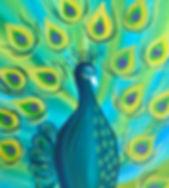 Peacock Proud 2.jpg