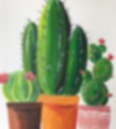 Cacti copy 2.jpg