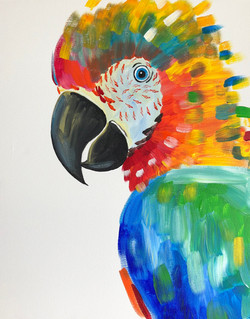 Playing with Parrots