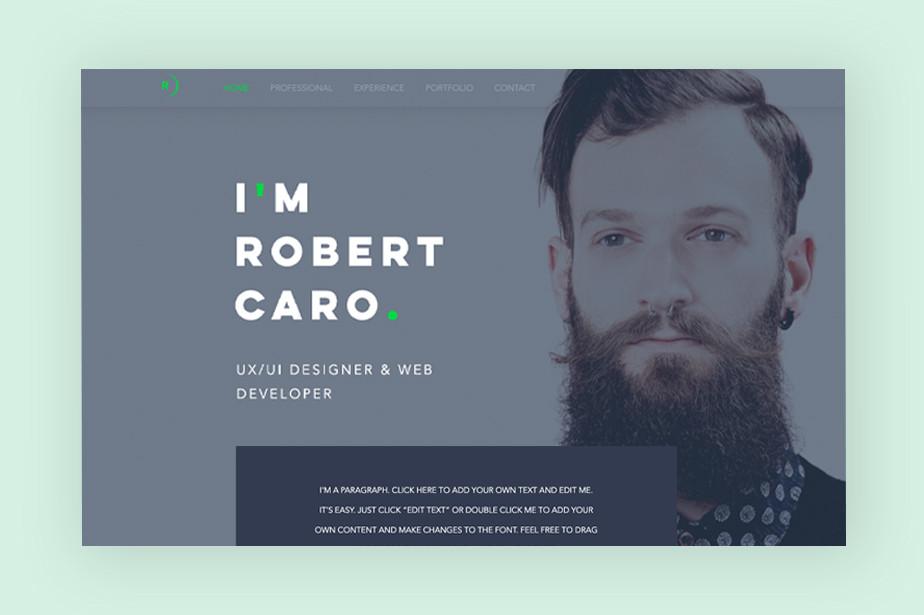 Web designer: UX/UI designer website template