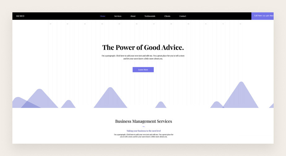 Data analyst service business website template