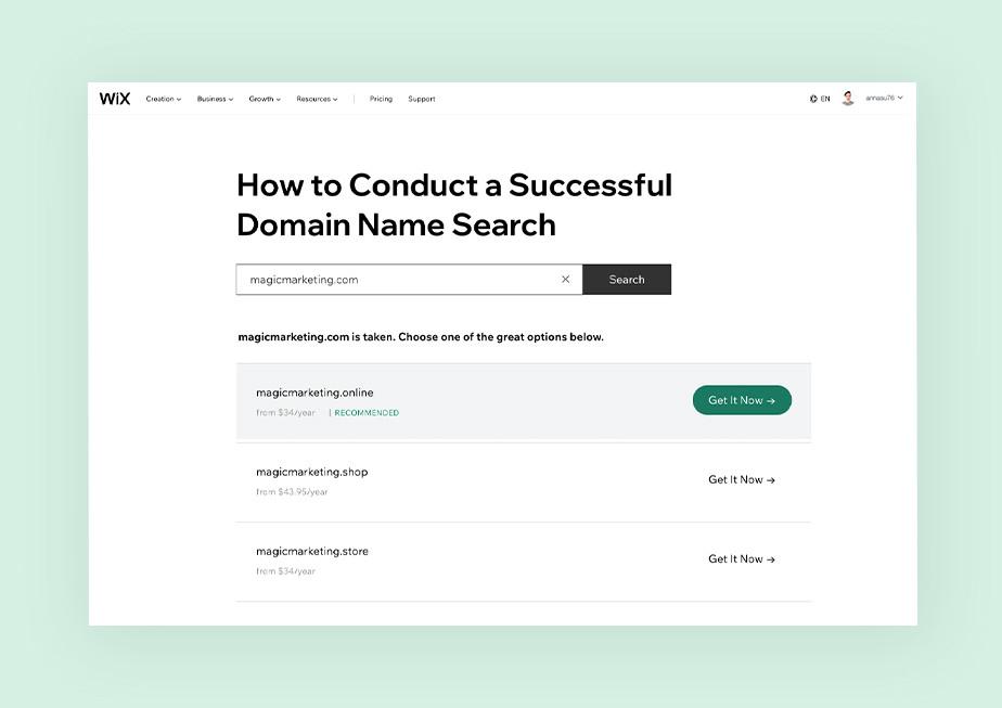 Domain name search web page