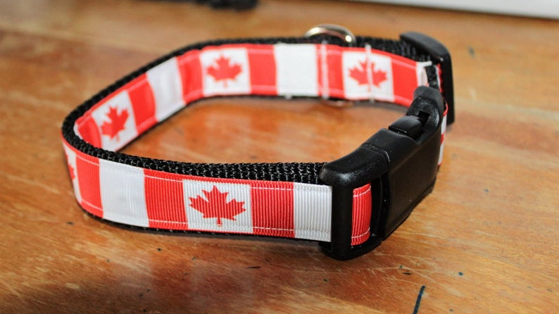 CANADIAN Plastic Buckle