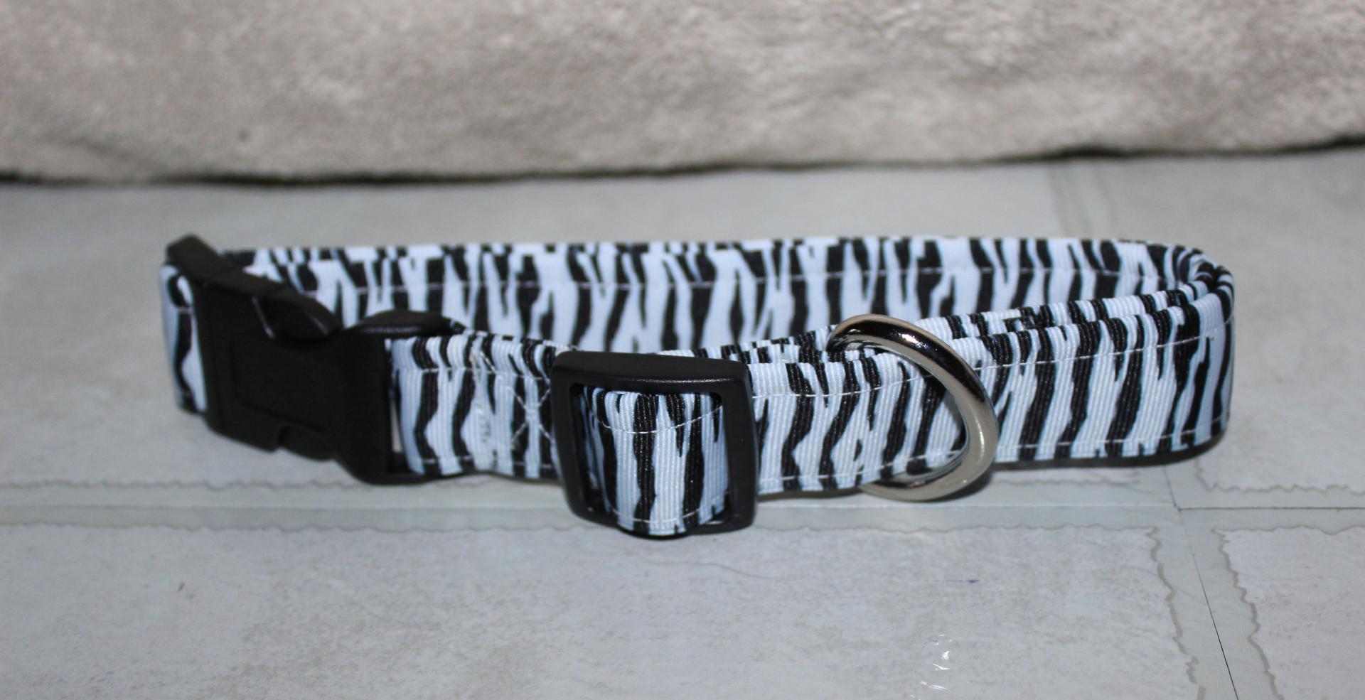 Zebra