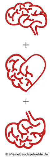 Kopf + Herz + Bauch Meine Bauchgefühle