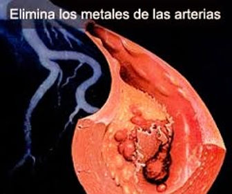 quelacion-elimina-metales-de-las-arterias_edited.jpg