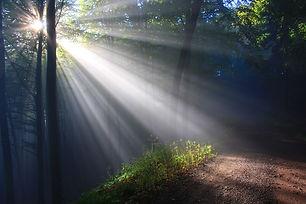 sunbeam-2761911_1280.jpg