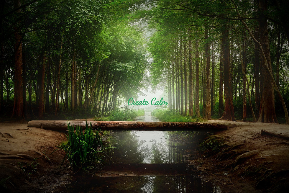 nature-4529056_edited.jpg