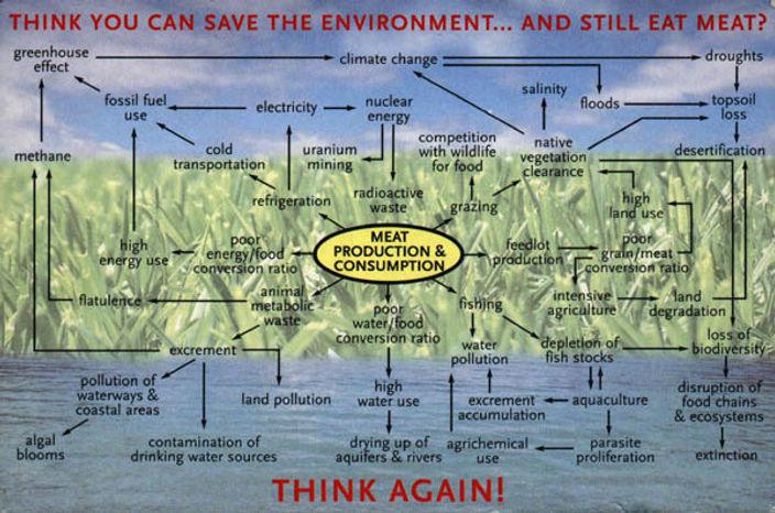 EnvironmentCardLarge.jpg