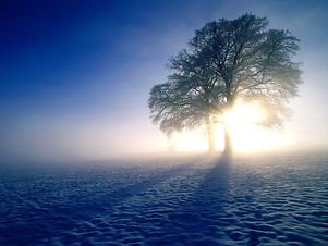 A-Cold-Winter-Morning-Mist wallpaper.jpg