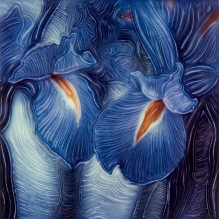 TWO BLUE IRIS