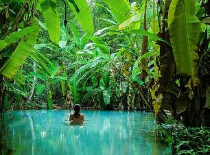Jalapão_natural_pool.jpg