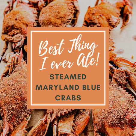 Best Thing I ever Ate! STEAMED MARYLAND BLUE CRABS