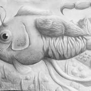 "Area Award Drawing ""Animorph"""