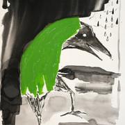 Limpy's Green Raincoat
