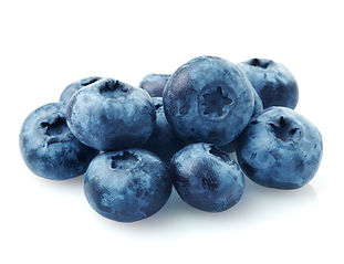 106545990-Blueberries.jpg