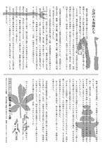 奥会津の木地師