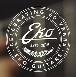 eko_guitars_8c9f.jpg