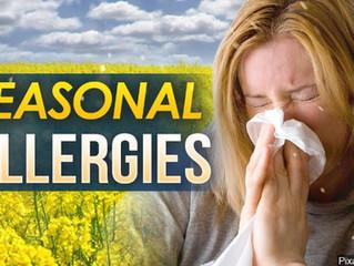 Seasonal Allergy Relief!