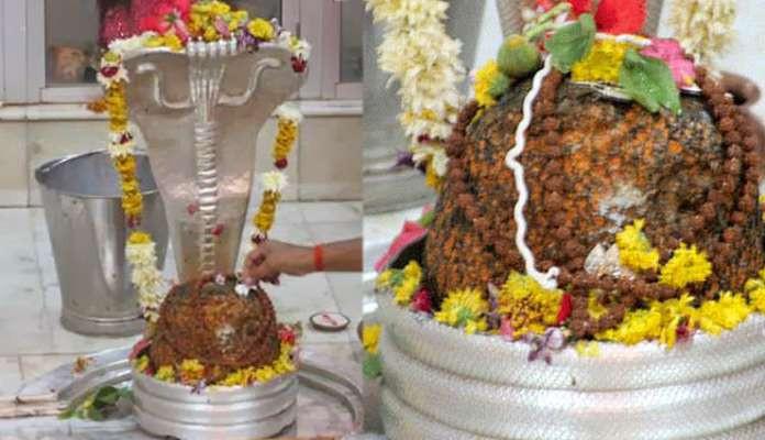 Дарука-вана, Дварака, шт. Гуджарат, Индия.