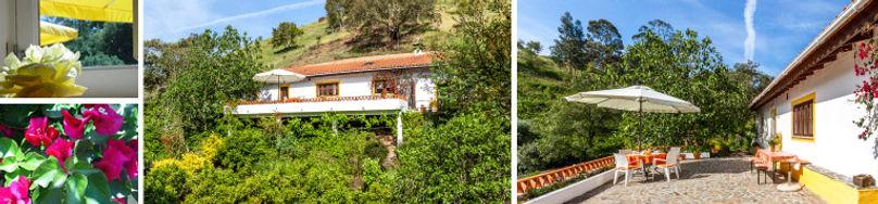 Montemaravilhas-Amarela.jpg
