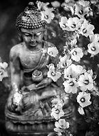 buddha statue w flowers.jpg