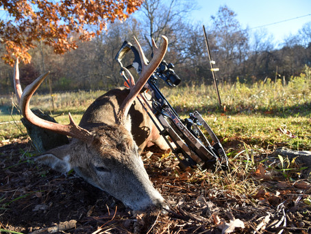 Wisconsin Hunters Receive Little Help Controlling CWD