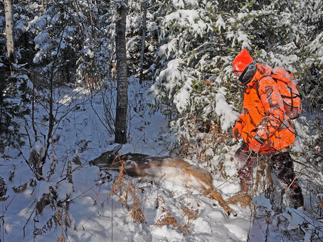 Time to Shame Wisconsin DNR's Policy-Setting Board