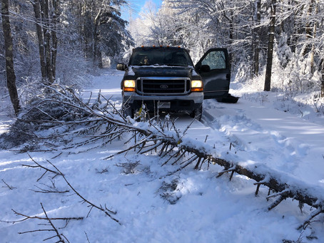 Fallen Tree on Snowy Road Can't Block Firewood Mission