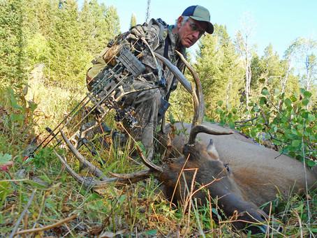 Idaho Bull Elk Helps Feed the Family
