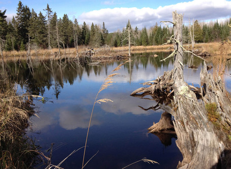 Great American Outdoors Act Needs Your Support