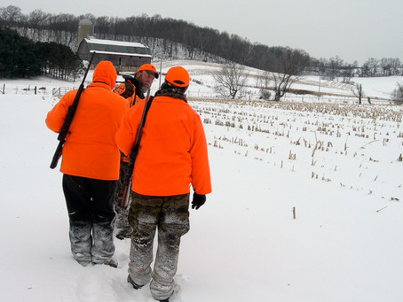 It's Time for DNR to Reclaim Deer Program