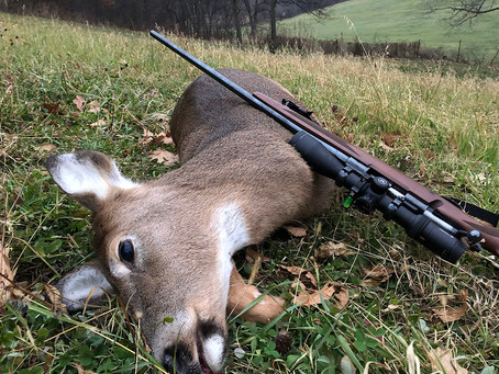 CWD Spreads as Critics Slam Crossbows, Protect Baiting