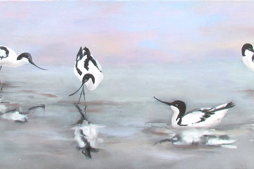 Only Avocets