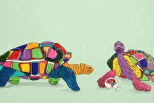 Trevor, Tina and Tiny Tim Tortoise Family