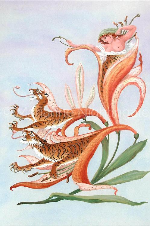 Tiger Lily Lady