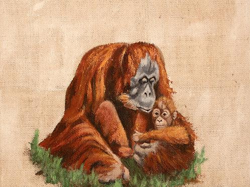 Orangutan - Close To Mother