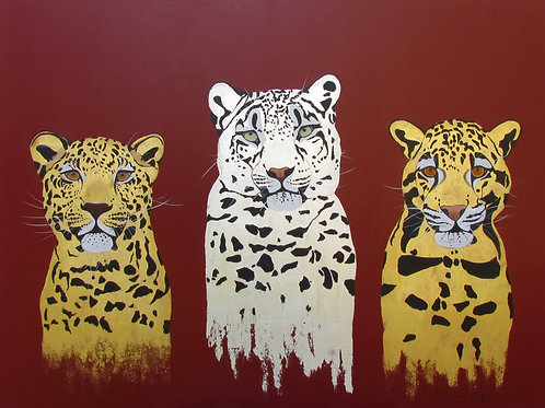 Three Lovely Leopards