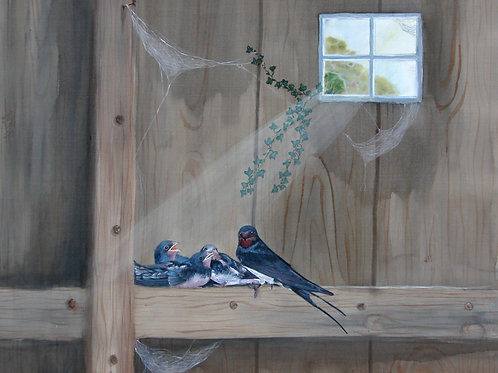 Summer Swallows
