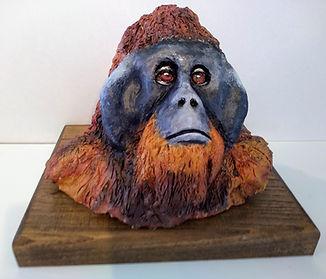 orangheadfin.jpg