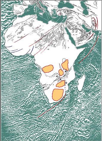Precambrian Africa vs FZs.jpg