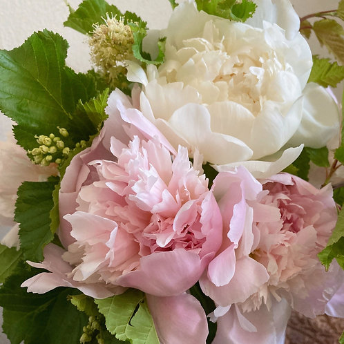 Peony Perfection Pre-Order