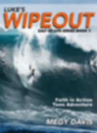 Lukes_Wipeout_V2 copyfor websit.jpg